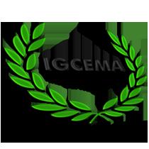 IGCEMA_VTS_3D-MEDIUM