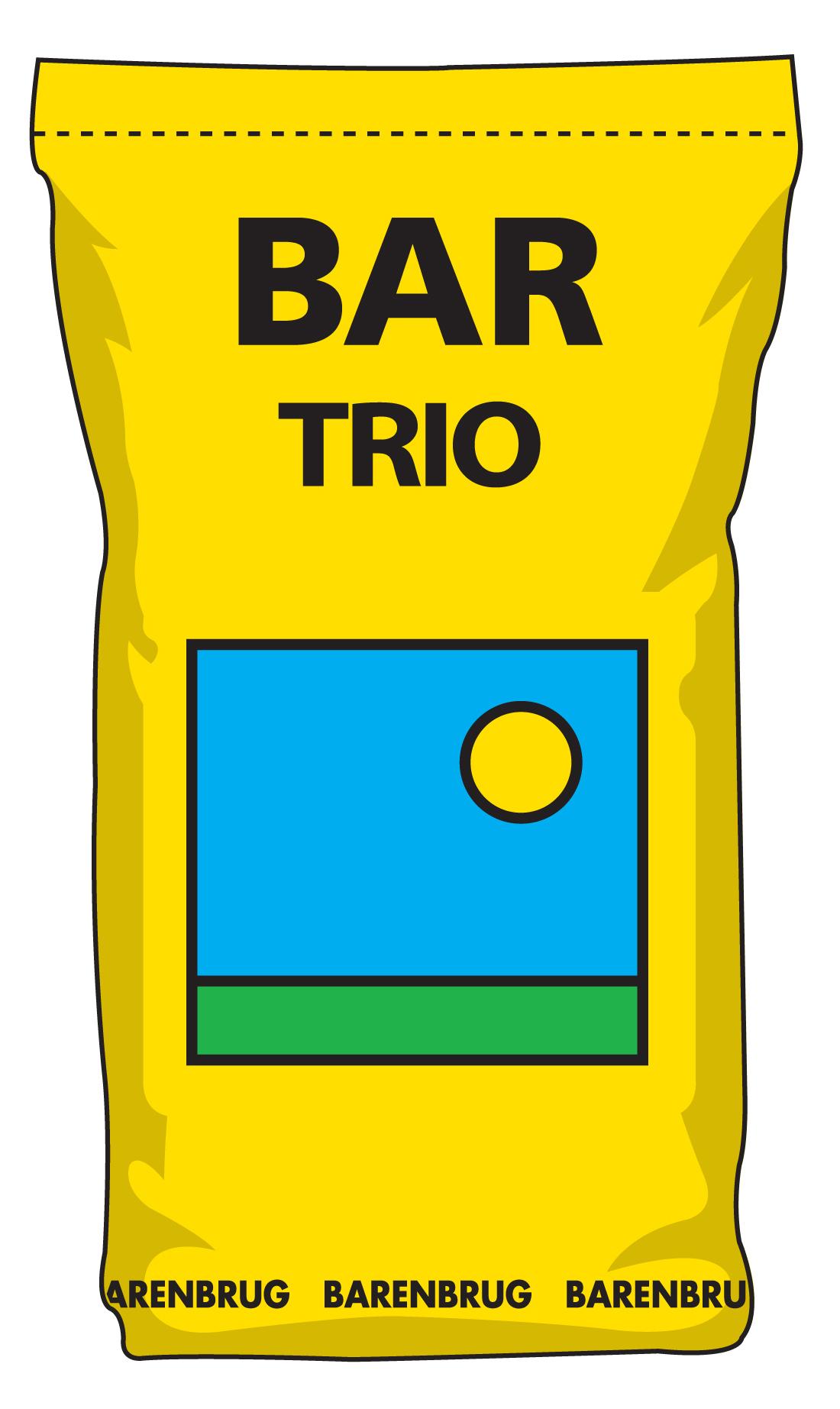 BAR Trio bag