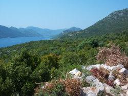 Hills Forrest Croatiad