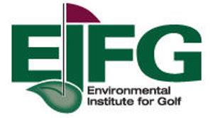 EIFG logo