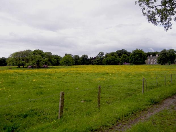 View to Woolsington Hall