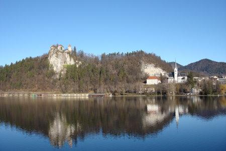 Swan Fly Back To Bled (Hi Res)