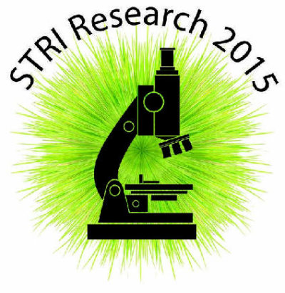 STRI Research sng