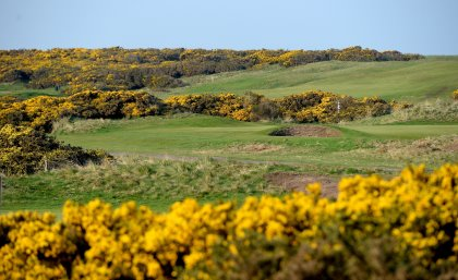 General Views of Golf Courses