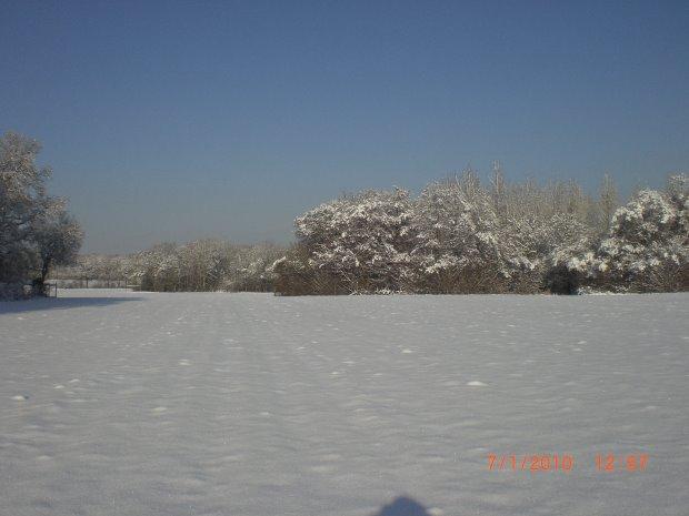 Bill Hawthorn winter image CIMG3995