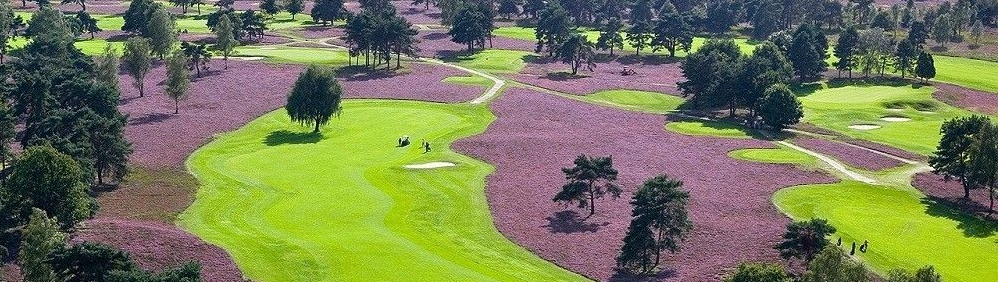 Royal Limburg GCC heather
