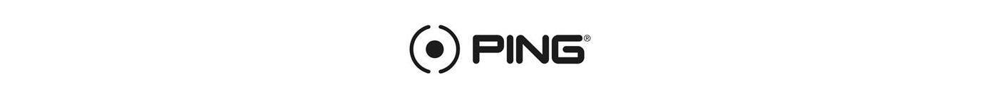 PING logomod