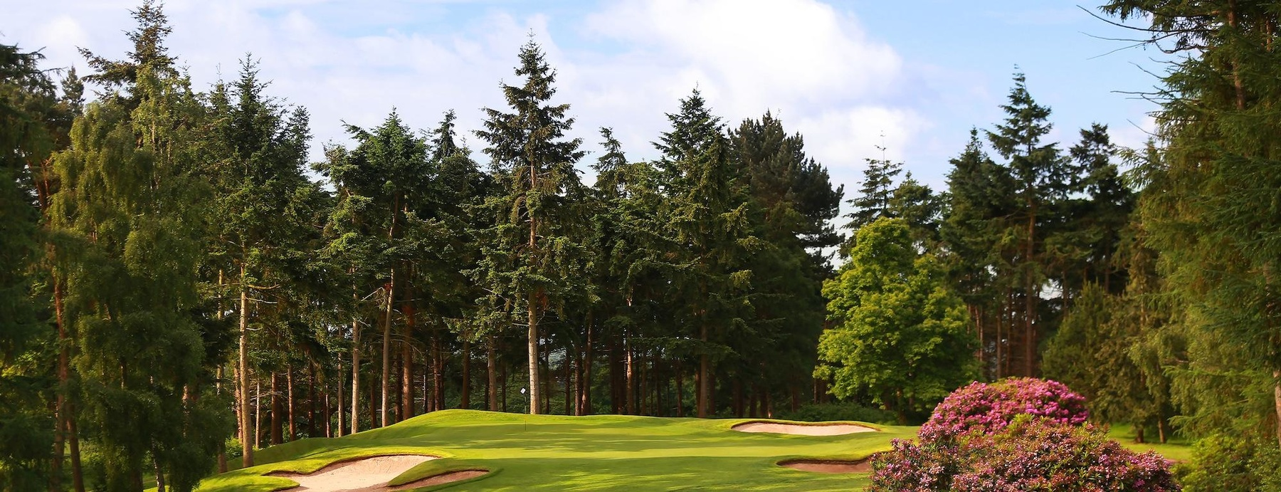 Carden Park crop17th-Cheshire-golf-course